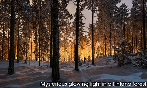 Mysterious glowing light in a Finland forest.