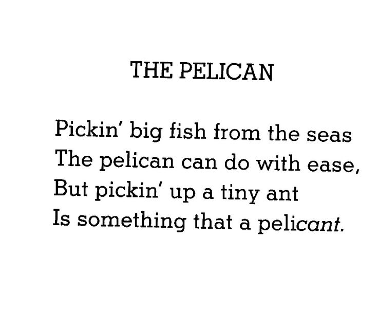 Funny Pelican Quotes Be A Pelican Not Pelicant Thequotegeeks