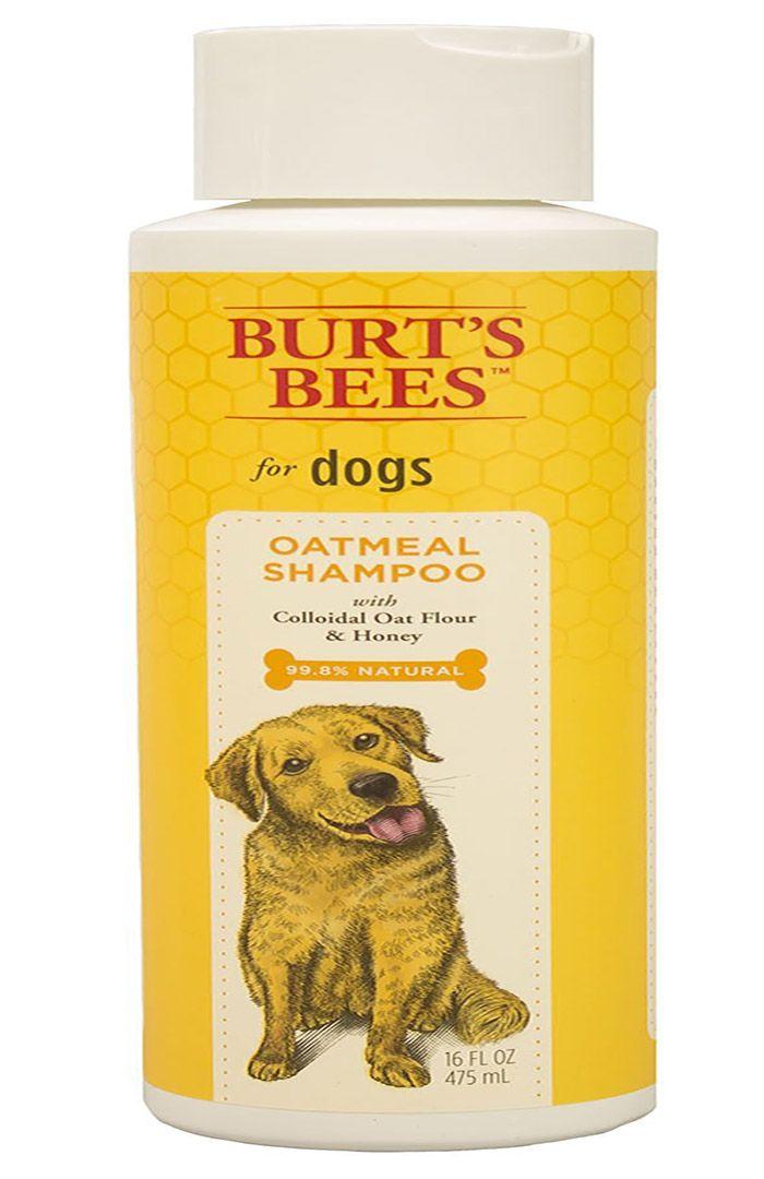 Burt's Bees Oatmeal Shine Shampoo
