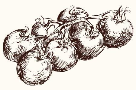 Są takie dni, kiedy łatwiej jest zrobić samemu pieczywo, niż zorganizować eskapadę do sklepu. Bułki codzienne wychodzą cudownie miękkie, puszyste i smaczne. I można je robić będąc jeszcze w piżamie... :) Przepis pochodzi z 1895r.