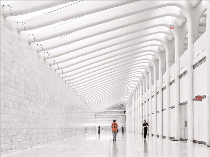 World Trade Center (PATH-Station) by HerbertAFranke #Architecture #fadighanemmd