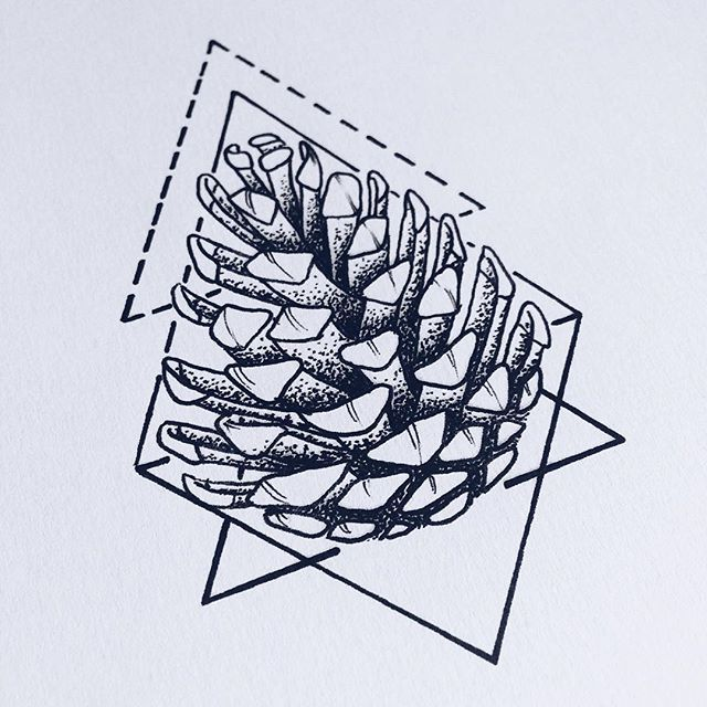 #pineconetattoo #tattoodesign #lineart #geometricaltattoo #pineconetattoodesign #wannado #pinecone #sketching #sketchbook #instaart