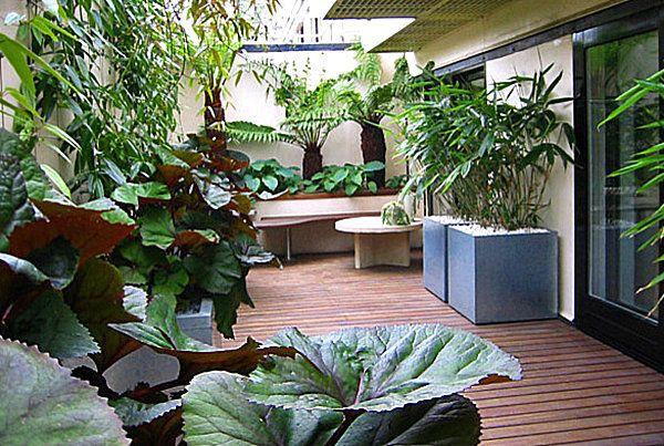 Lush balcony garden