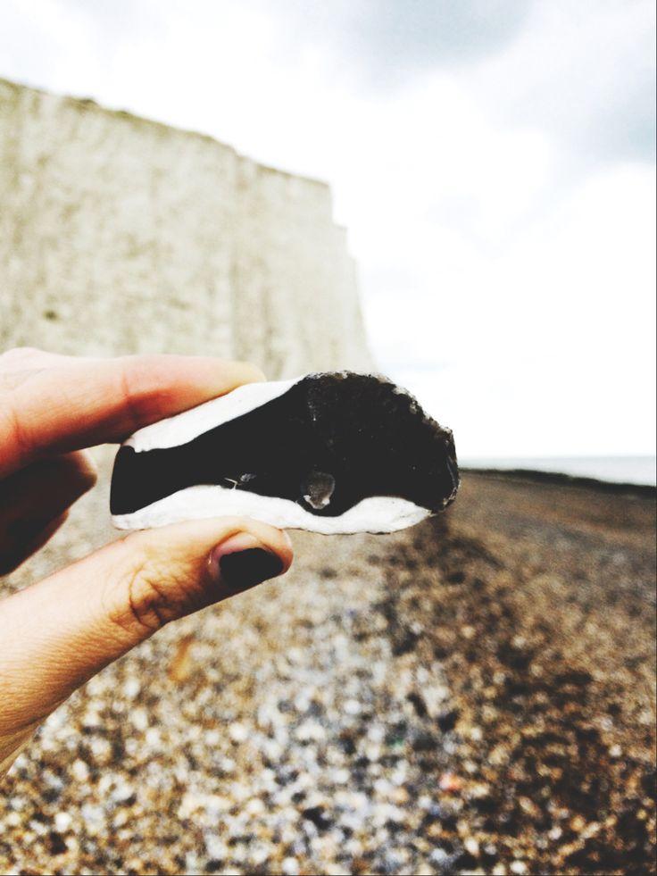 Rock whale