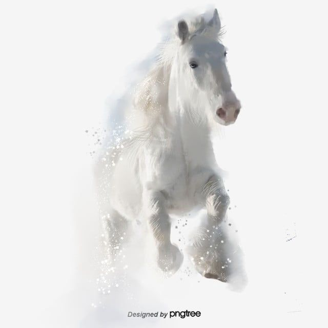 White Horse Running Elements Element Animal Poster Png Transparent Clipart Image And Psd File For Free Download In 2020 White Horse Free Green Screen Animal Posters