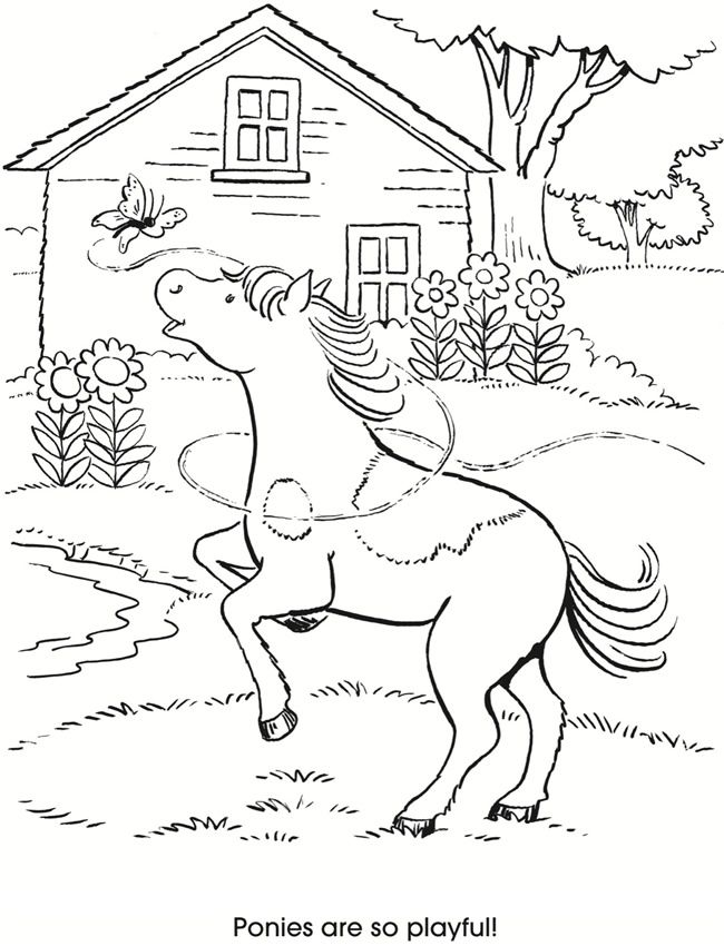 Lets Color Together Horses And Ponies Dover Publications