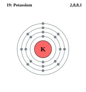 Atom Diagrams: Potassium Atom