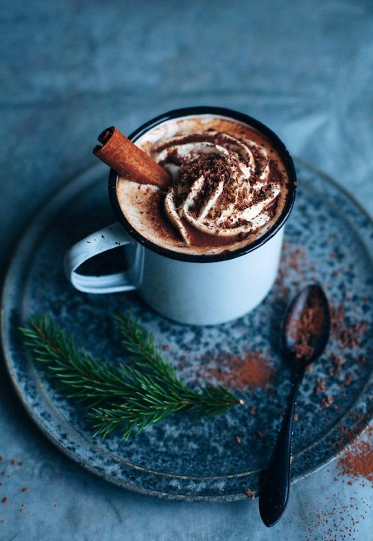 (or wish we were eating!) cinnamon hot cocoa.. a holiday in a cup.
