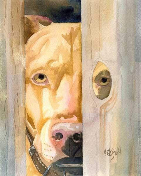 Pit Bull Art Print of Original Watercolor Painting by dogartstudio