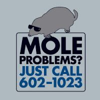 Point of Interest!: Happy Mole Day (North America)