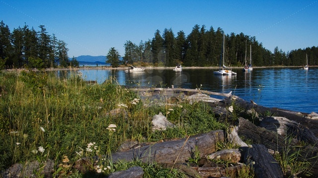 Rebecca Spit Marine Provincial Park on Quadra Island, Off the East Coast of Vancouver Island. Lovely spot to anchor. Terrific sunsets and a wide sandy beach. Close to supplies at Drew Harbour.