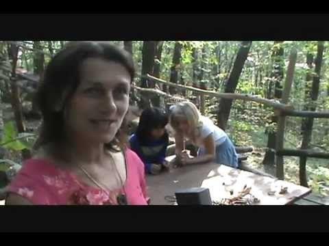 Plants are intelligent beings. Singing Plants at Damanhur | Des plantes qui jouent de la musique.