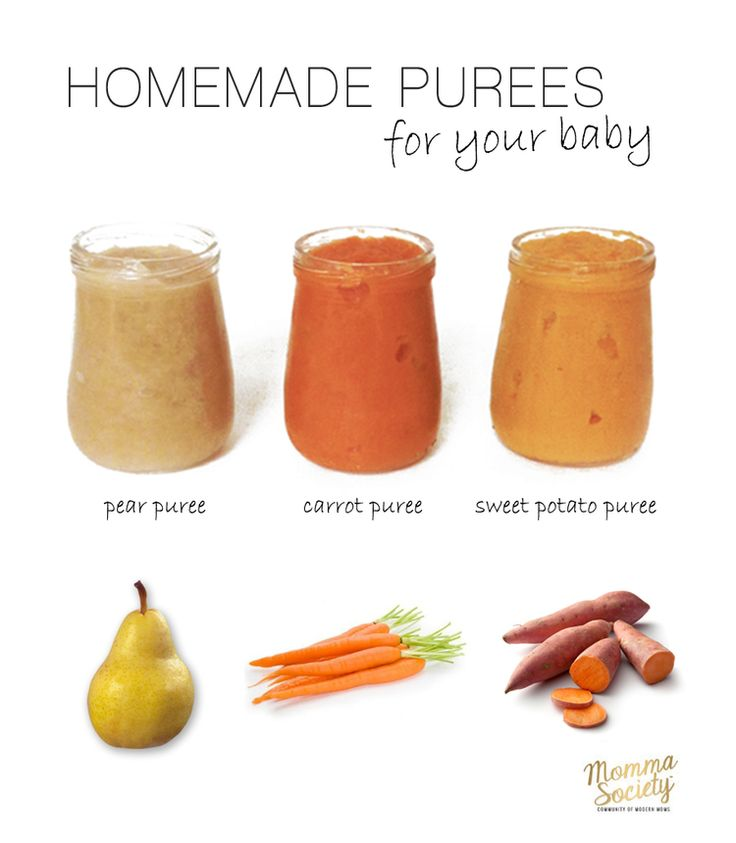 Introducing Foods to Baby and Puree Baby Food Recipes | Momma Society | Community of Modern Moms | www.mommasociety.com