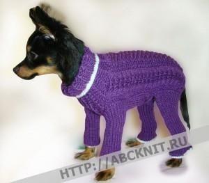 Вязание на спицах схемы кофта для собаки
