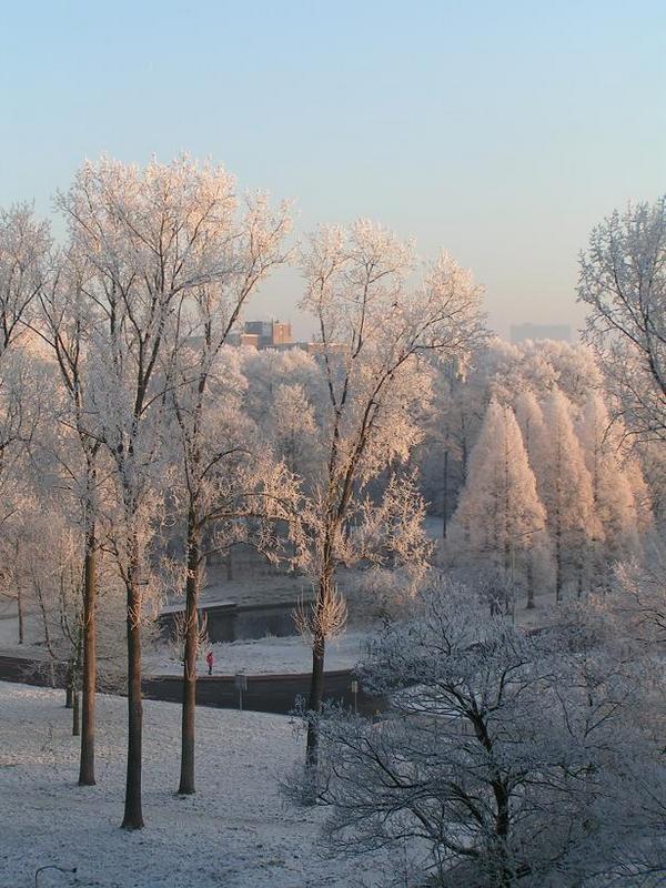 Nijmegen, The Netherlands. My view in the winter.