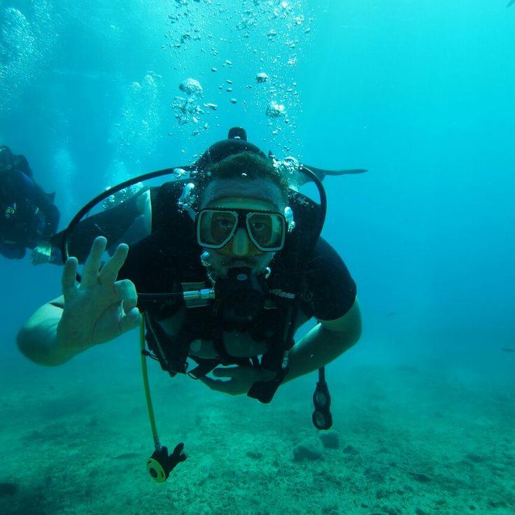 Ayvalık dalış okulu - ida dalış merkezi #scuba #scubadiving #diving #underwater #dalisnoktam #ayvalikdalis #daliskursu #dalismerkezi #dalis #mercan  www.idadiving.com