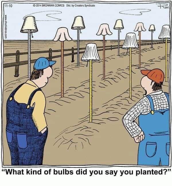 Idea By Meredith Seidl On Gardening Quips Quotes Funnies Gardening Humor Little Garden Humor
