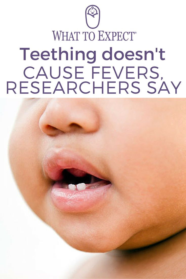 A new study has concluded that teeth eruption shouldn't cause fevers. A slight rise in temperature, of a degree or two, may be normal, but a true fever — defined as a body temperature of 100.4 or greater — is likely caused by something else. #babyfever #whattoexpect | whattoexpect.com
