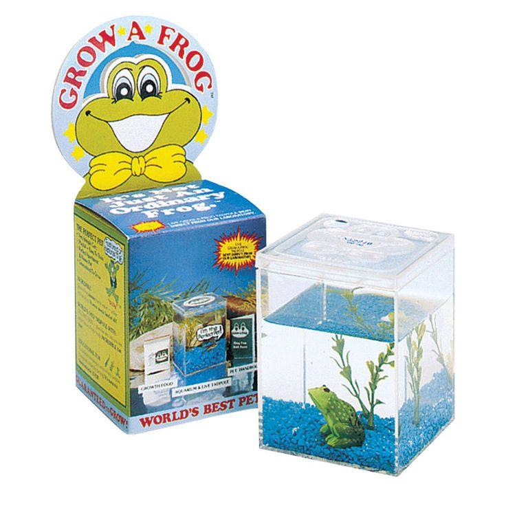 Award Winning Educational Toys : Pin by karen kaufman on kid stuff pinterest
