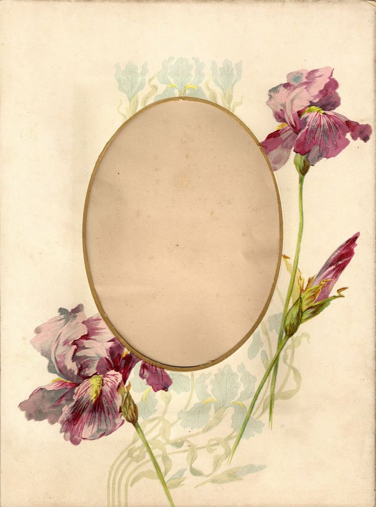 some nice bird prints and floral frames on this post ~ The Feathered Nest ~