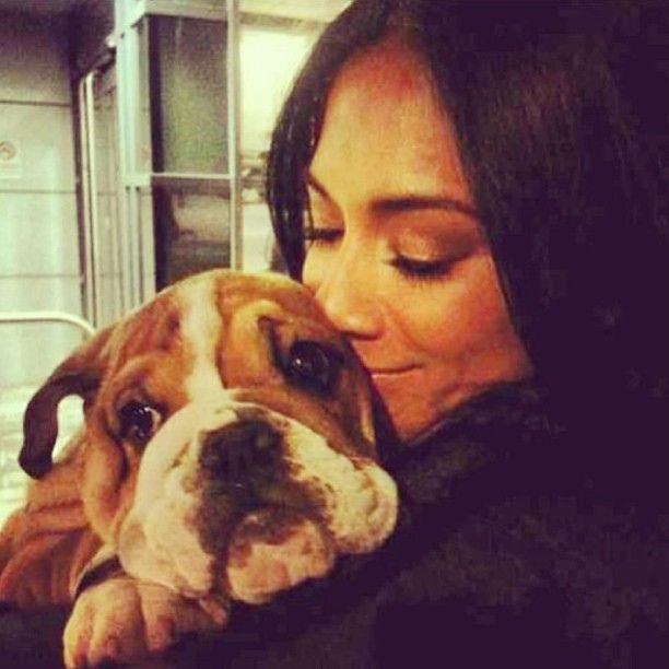#Nicole #Scherzinger with her #English #Bulldog! Amazing to see the Bulldogs out there! #dogs #pets #animals #celebrities