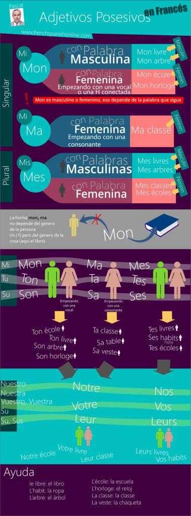 """Adjetivos Posesivos en FrancésAqui esta el video: VIDEORegla:Usamos """"mon, ton , son"""" con todos los sustantivos masculinos y tambien con los que son femininos si empiezan por una vocal o por la """"h muda"""".Se usa """"ma, ta, sa"""" con nombres femininos que empiezan por una consonante.Y """"mes, tes, ses"""" es ..."""
