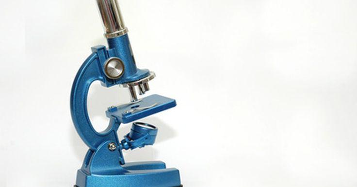 Microscopio simple y compuesto: diferencias. Los microscopios más simples son de lo más rudimentarios ya que sólo constan de una lente y apenas pueden aumentar el tamaño de una imagen. Cuando Zacharias Janssen, en 1590, inventó el microscopio compuesto, revolucionó el campo de los microscopios, ya que permitió que los científicos accedieran a un mundo microscópico totalmente nuevo. Hay ...