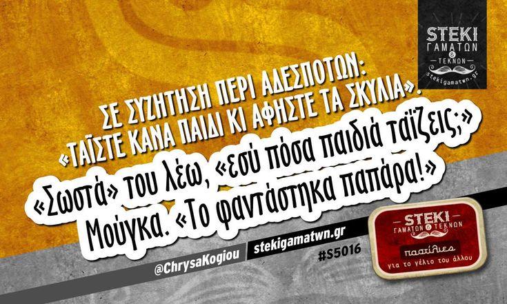Σε συζήτηση περί αδέσποτων @ChrysaKogiou - http://stekigamatwn.gr/s5016/