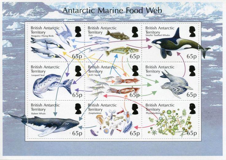 """山田英春 Hideharu YAMADAさんのツイート: """"イギリス領南極地域のこれは海洋生物食物連鎖切手シート。 https://t.co/SU3wzQzHmd"""""""