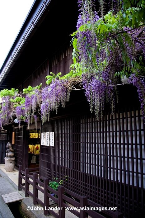 Takayama, Japan: photo by John LanderJapan Japanese, Japan Government, Gifujapan, Things Japanese, Takayama Japan, Image, Gifu Japan, Japan Gardens, Japanese Government