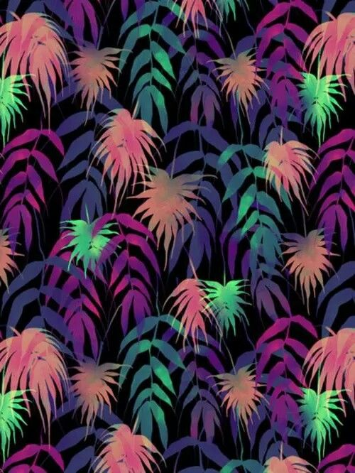 Neon Palm Fron Wallpaper Color Wallpapers Leaves