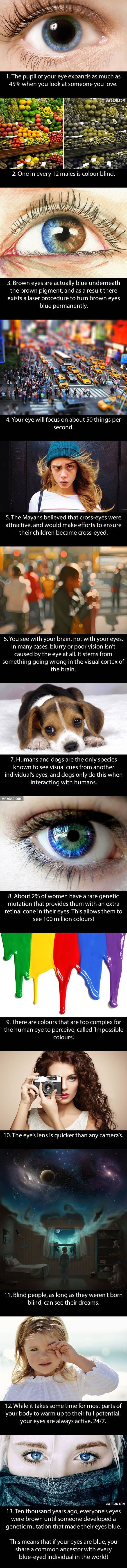 13 incredible facts about your eyes! #health #wellness #eyes