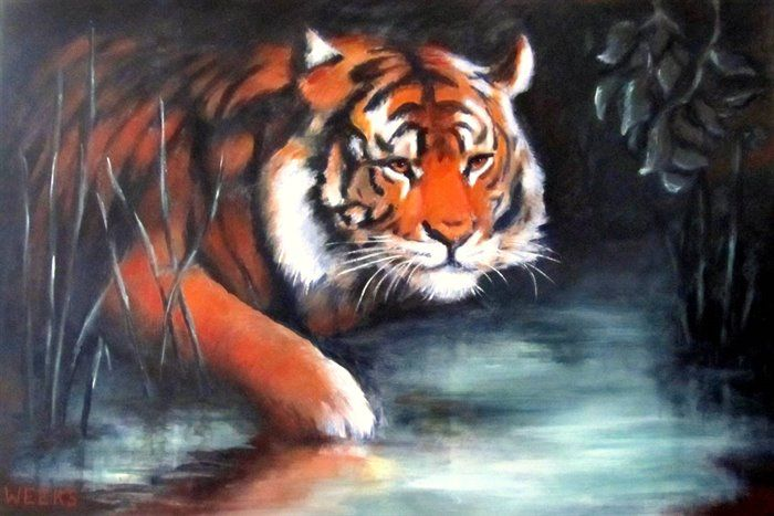 Tiger Tiger Burning Bright by Hilary Weeks