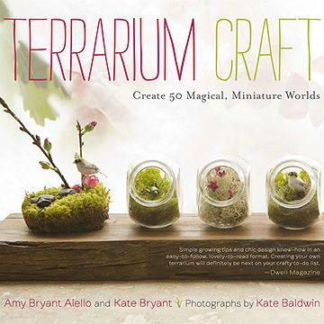 how to make a DIY terrarium.