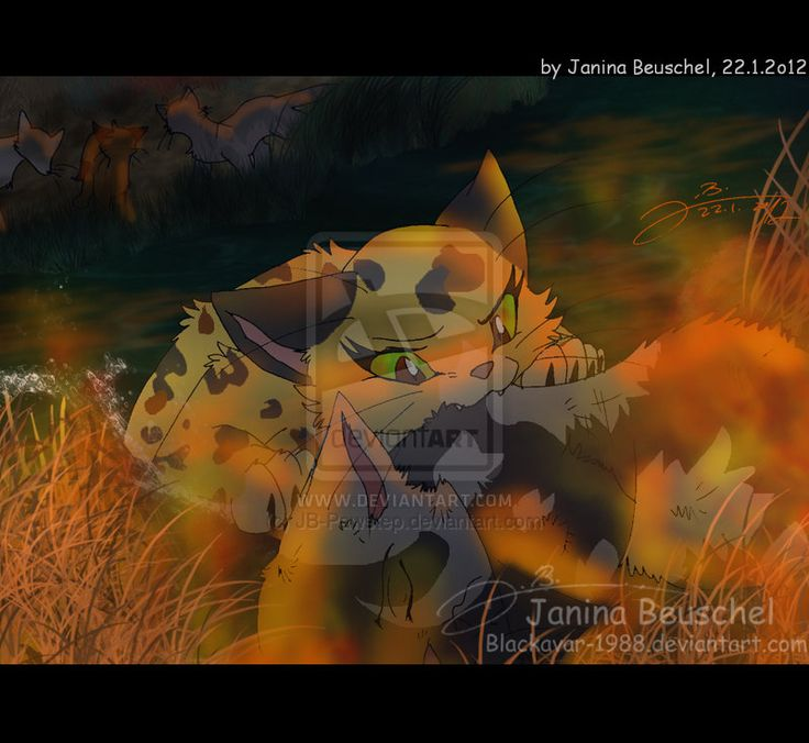 Warriors Into The Wild Ending: Rising Storm -Brave RiverClan Deputy Leopardfur By JB