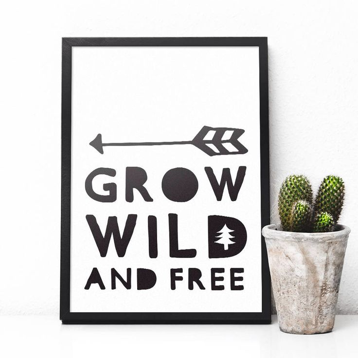I've just found 'Grow Wild And Free' Typographic Giclée Nursery Print. A gorgeous monochrome giclée print, that would make a stylish addition to any contemporary modern living space.. £5.25