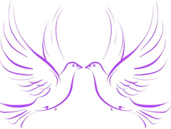 Love the two doves