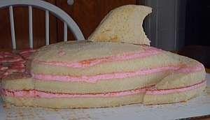 dolphin birthday cakes | dolphin cake fin