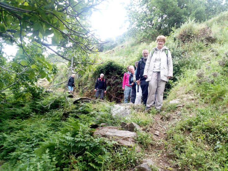 hiking footpath No11 Arni - Batsi , Andros