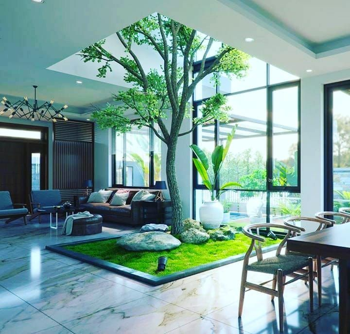 Tree Inside House Follow Mostbeautifulinteriors