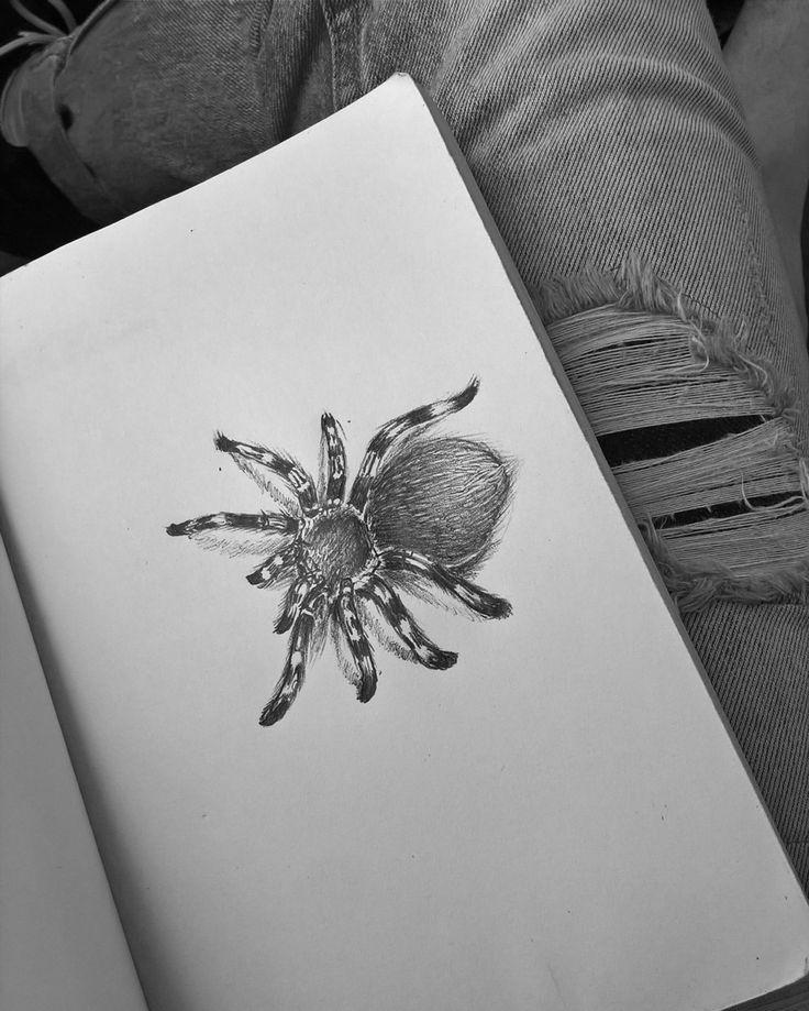 """""""…È forse perché proviamo un naturale terrore verso simili entità, considerata la loro capacità  di infliggere danni materiali al nostro corpo? Oh, assolutamente no! Questi terrori provengono da un passato molto più antico."""" -Charles Lamb-  #spider #tarantula #sketch #animal #horror #drawing #insect"""