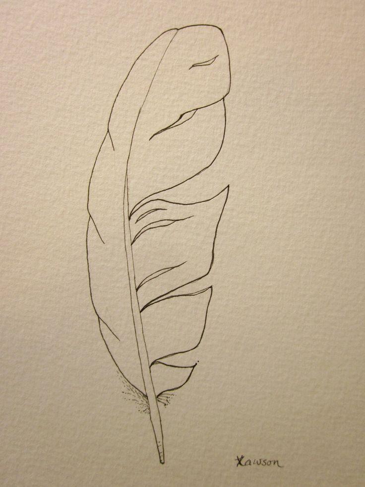 Sea bird feather -- original ink drawing
