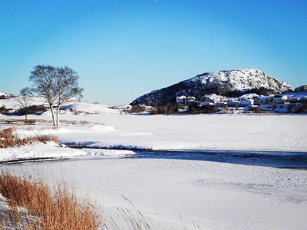 Quidi Vidi Under Snow by Zinvolle - Photo taken at Quidi Vidi Lake, Newfoundland, Canada