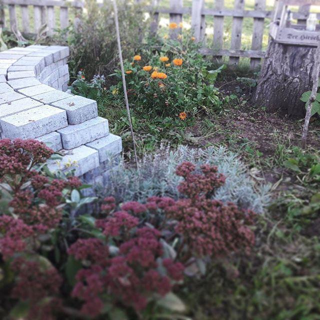 Die besten 25+ Beeteinfassung stein Ideen auf Pinterest Pflanzen - gartengestaltung mit steinen und blumen