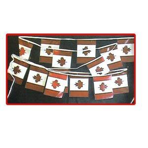 "Canada Pennant Banner 30' long (9"" x 12"" panels)"