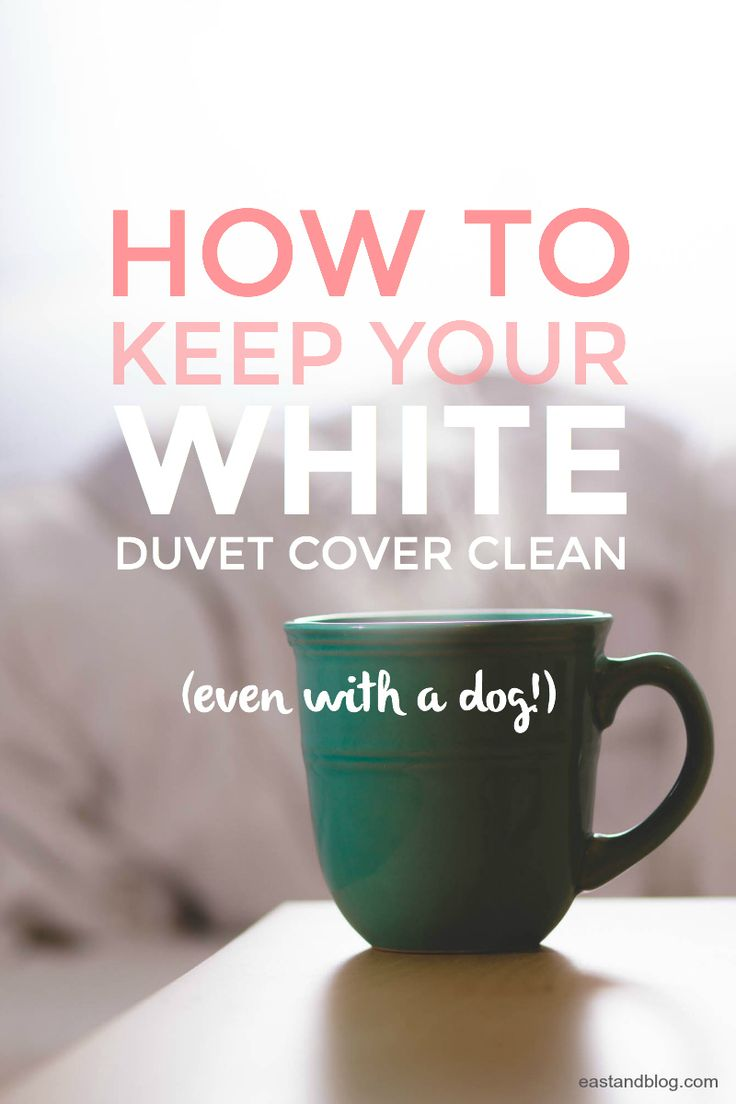 How to Keep Your White Duvet Cover Clean (Even With a Dog!) - Cleaning tips for your white duvet cover, a helpful tutorial for dog owners who want to embrace the crisp white trend! | eastandblog.com
