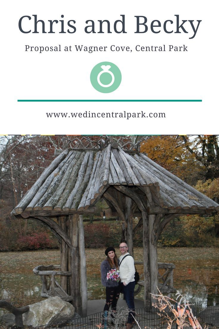 A marriage proposal we helped with back in December, in Wagner Cove, Central Park, New York. (engagement)