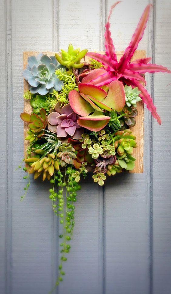 Réaliser un cadre original avec des plantes grasses! 20 idées + tutoriel vidéo