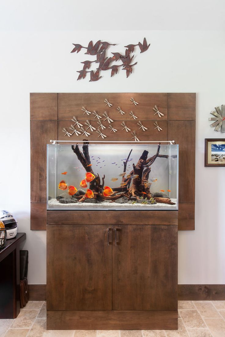 520l cabinet aquarium fish tank tropical - In Composition With Vibrant Fish Ex Pallets Gurami Or Tetras