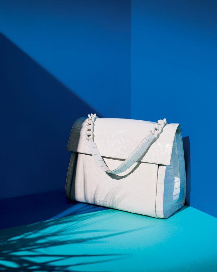 CLEAN SLATE: crisp white from Nancy Gonzalez palm shadow